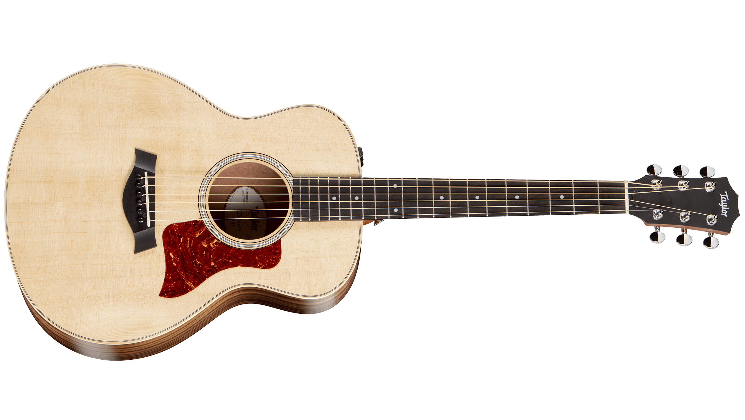 Taylor-GS-Mini-e